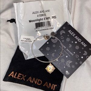 NWT Moonlight Alex and Ani